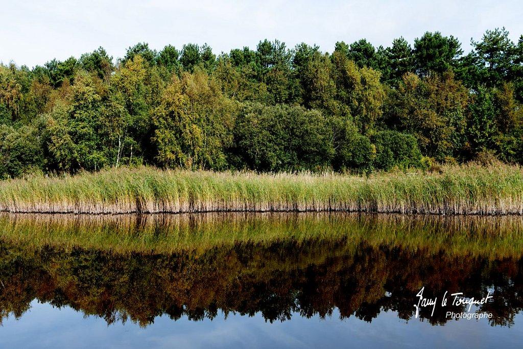 Baie-de-Somme-0127.jpg