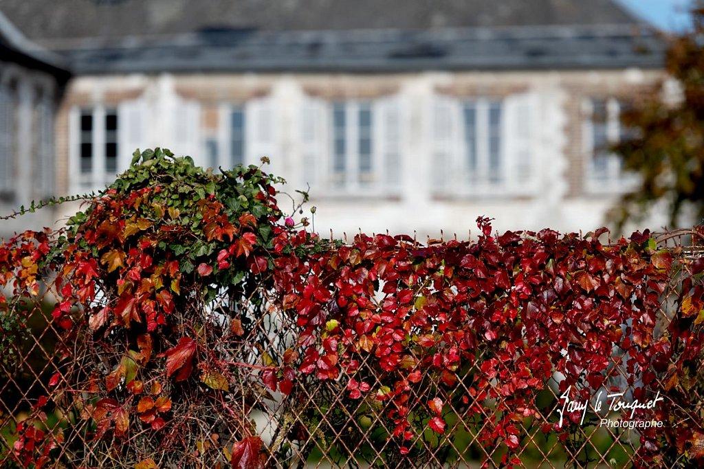 Baie-de-Somme-0141.jpg