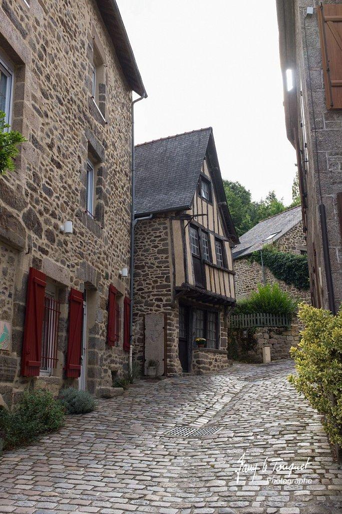Ille-et-Vilaine-0132.jpg