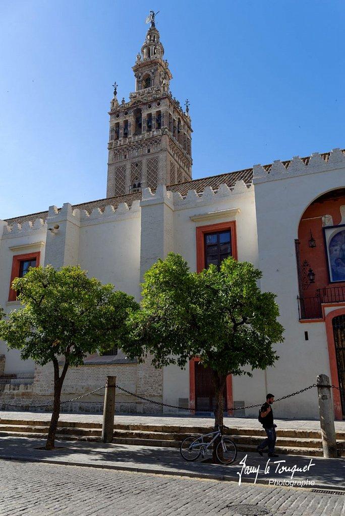 Seville-0009.jpg