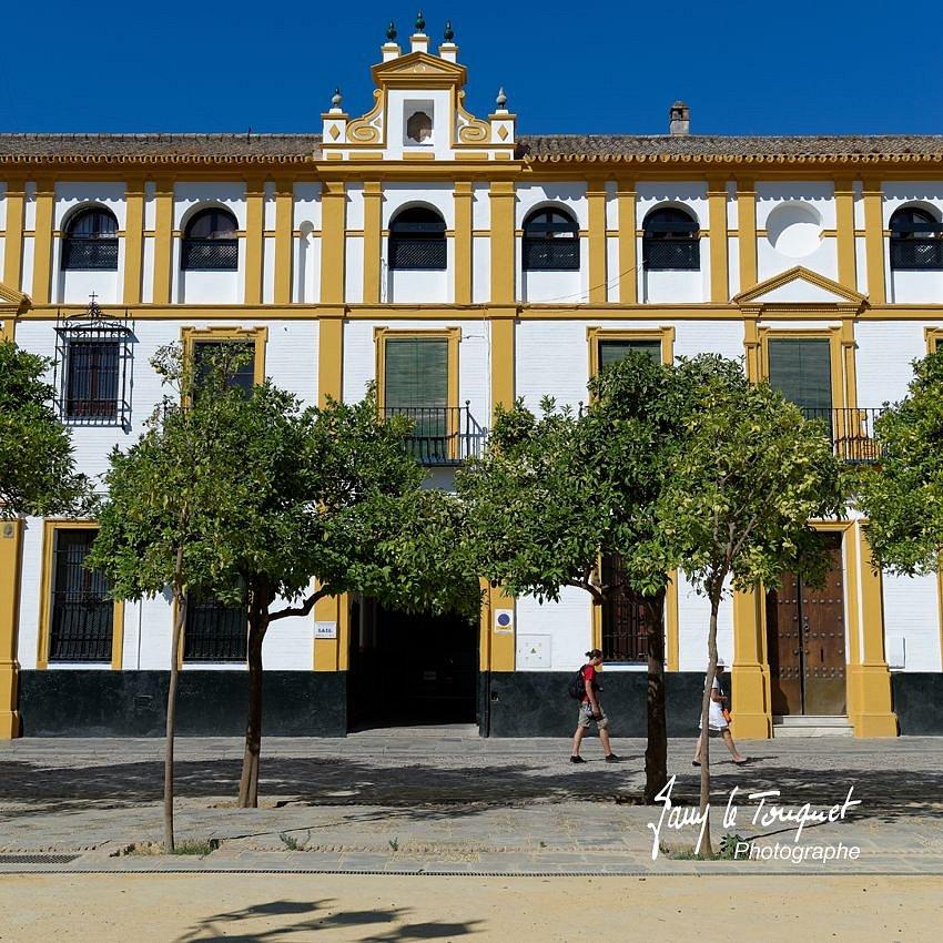 Seville-0015.jpg