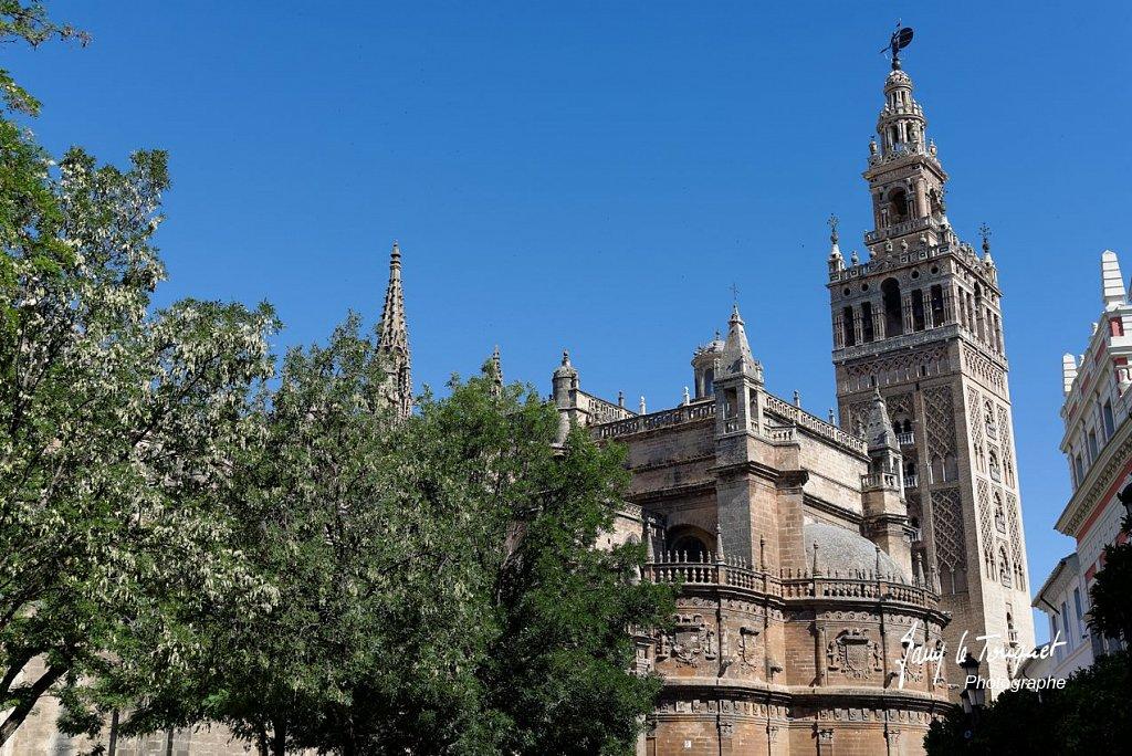 Seville-0016.jpg