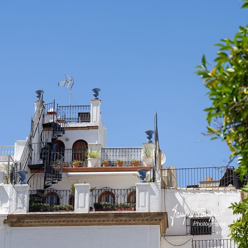 Seville-0193.jpg