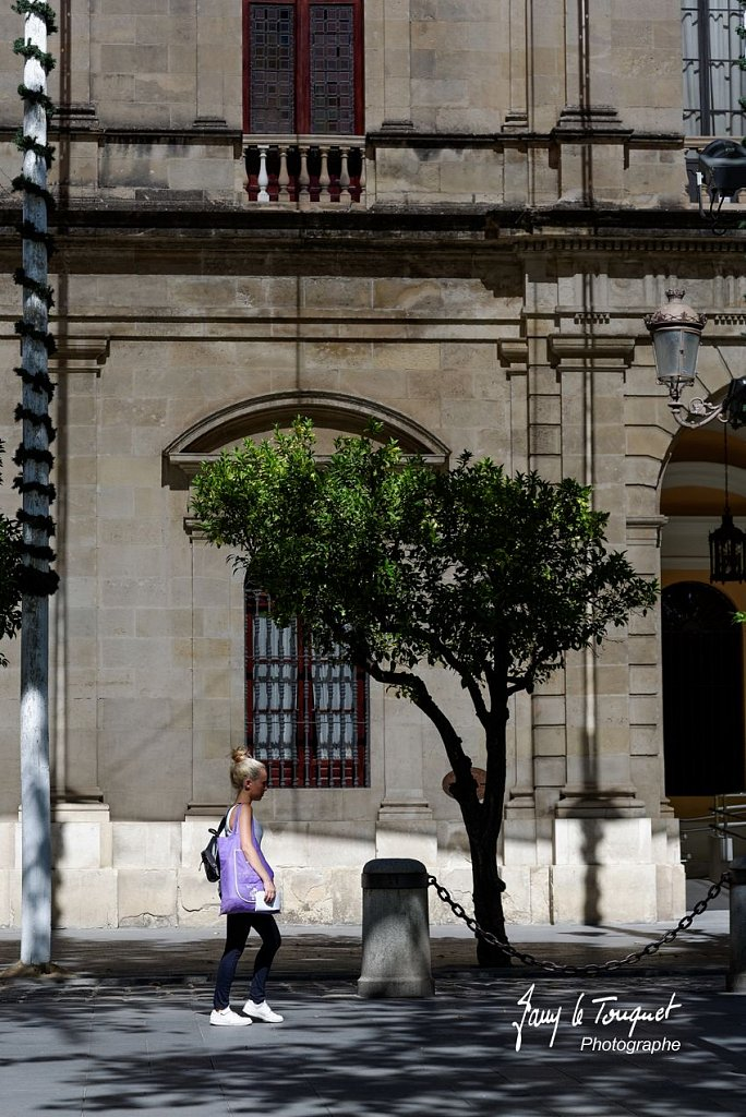 Seville-0197.jpg