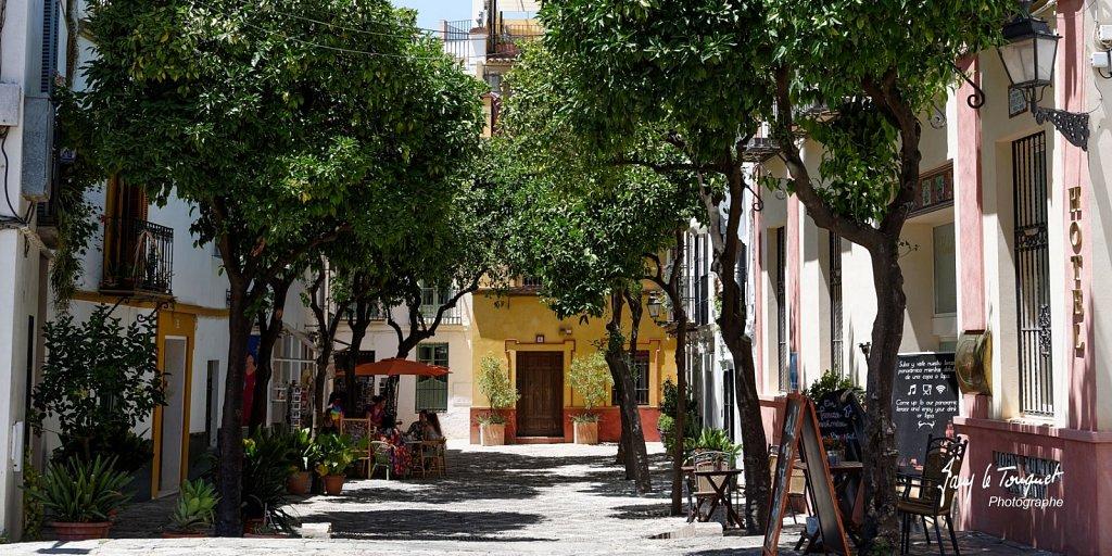Seville-0228.jpg
