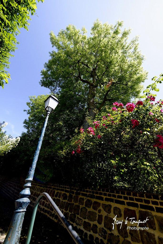 Veules-les-Roses-0043.jpg