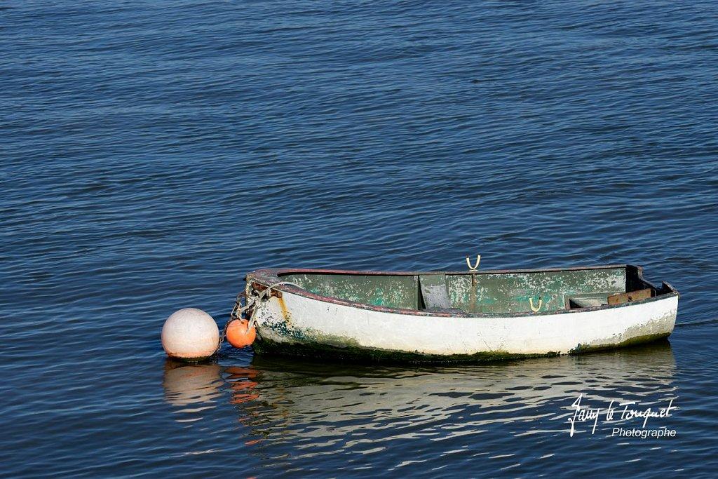Baie-de-Somme-0182.jpg