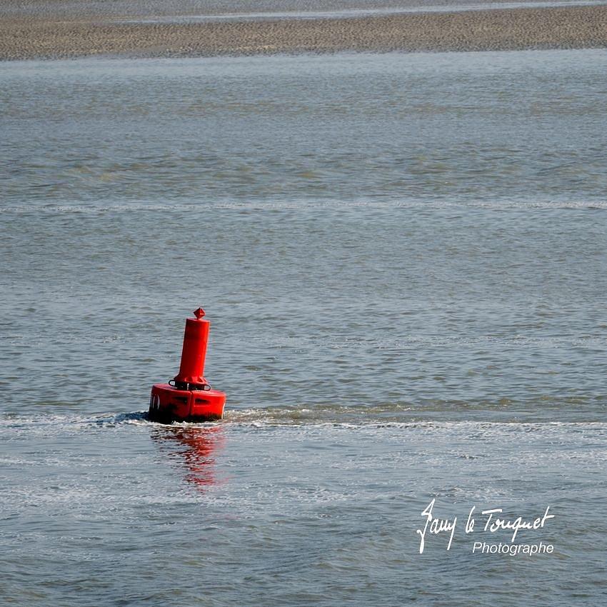 Baie-de-Somme-0219.jpg