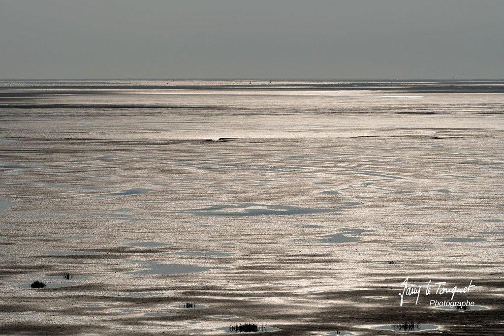 Baie-de-Somme-0221.jpg