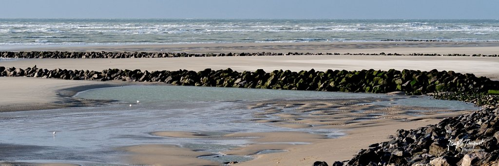 Berck-sur-Mer-0592.jpg